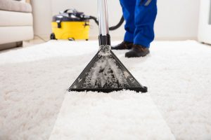 Professional Carpet Cleaners NYC