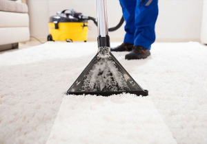 Greenchoicecarpet add protection to carpets