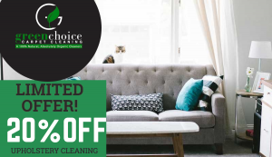 Organic Upholstery Steam Cleaning NYC