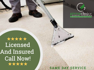 Green Carpet Cleaner New Jersey